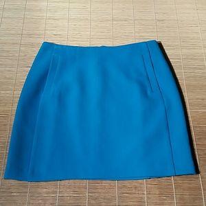 Banana Republic Blue Skirt. 8